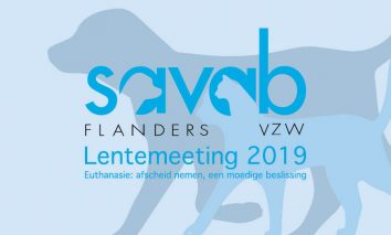 Savab-Flanders-VZW-Lentemeeting-2019-Vera-Icon